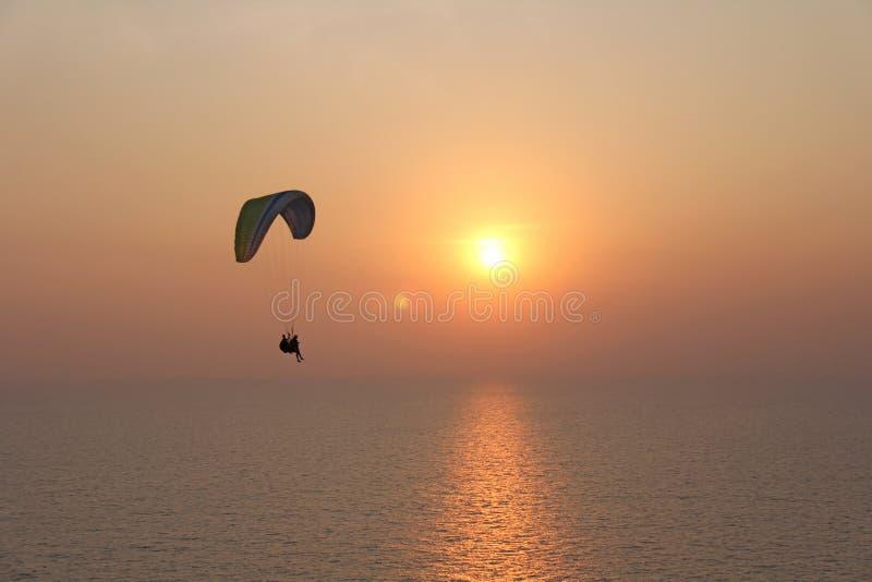 Ένα ανεμόπτερο στα πλαίσια της θάλασσας και του ηλιοβασιλέματος ή daw στοκ εικόνες