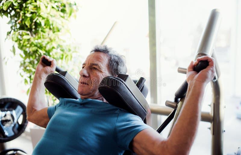 Ένα ανώτερο άτομο που κάνει τη δύναμη workout ασκεί στη γυμναστική στοκ φωτογραφίες με δικαίωμα ελεύθερης χρήσης
