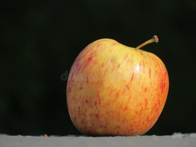 Ένα απομονωμένο μήλο στο σκοτεινό υπόβαθρο, επάνω σε μια γκρίζα επιφάνεια στοκ εικόνα
