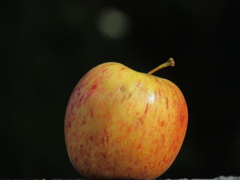 Ένα απομονωμένο μήλο στο σκοτεινό υπόβαθρο στοκ εικόνες με δικαίωμα ελεύθερης χρήσης
