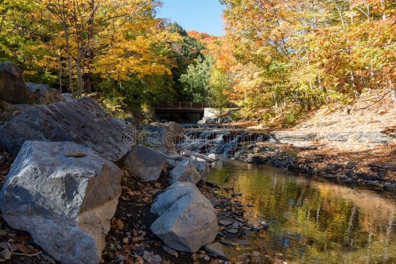 Ένα απόγευμα φθινοπώρου από ένα ρεύμα βουνών στο κρατικό πάρκο Κόλπων ακονών στοκ φωτογραφία με δικαίωμα ελεύθερης χρήσης