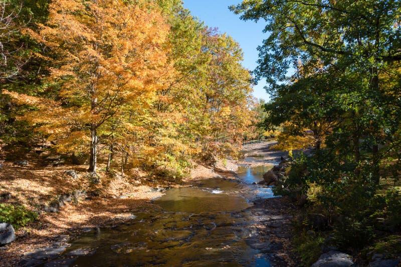 Ένα απόγευμα φθινοπώρου στο κρατικό πάρκο Κόλπων ακονών στοκ φωτογραφίες