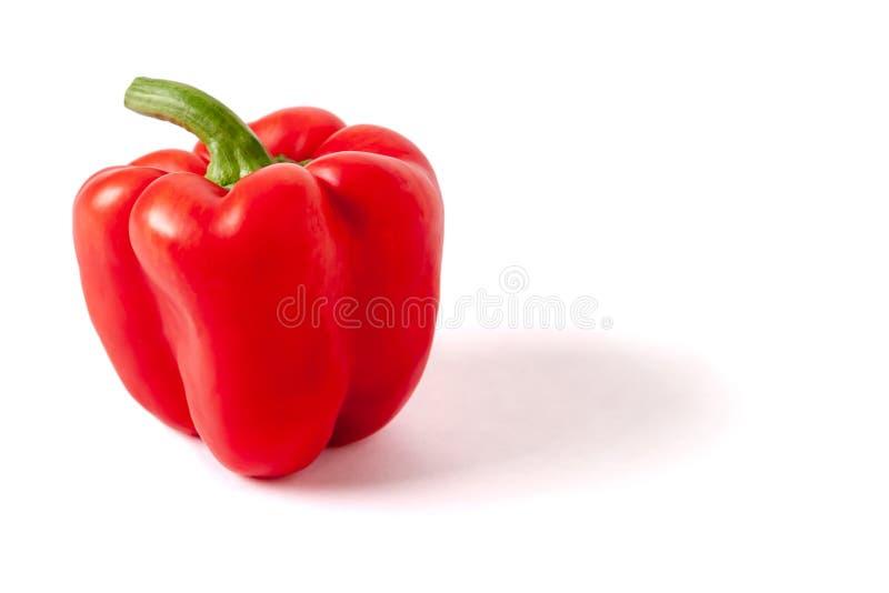 Ένα γλυκό πιπέρι, κόκκινο, που ανάβει αριστερά, με το διάστημα αντιγράφων στοκ εικόνες