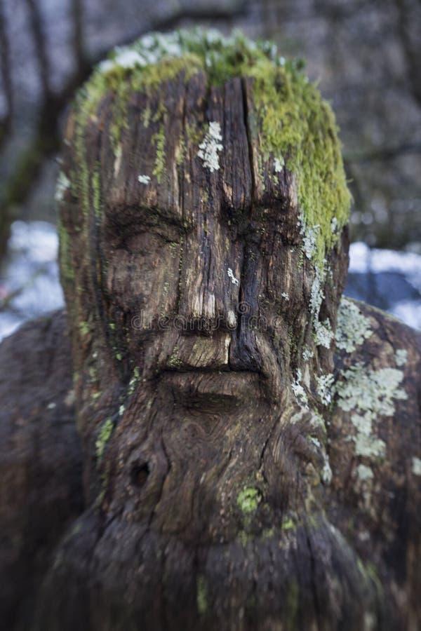 Ένα γλυπτό ενός τρομακτικού προσώπου που κρύβεται στα ξύλα στοκ φωτογραφία