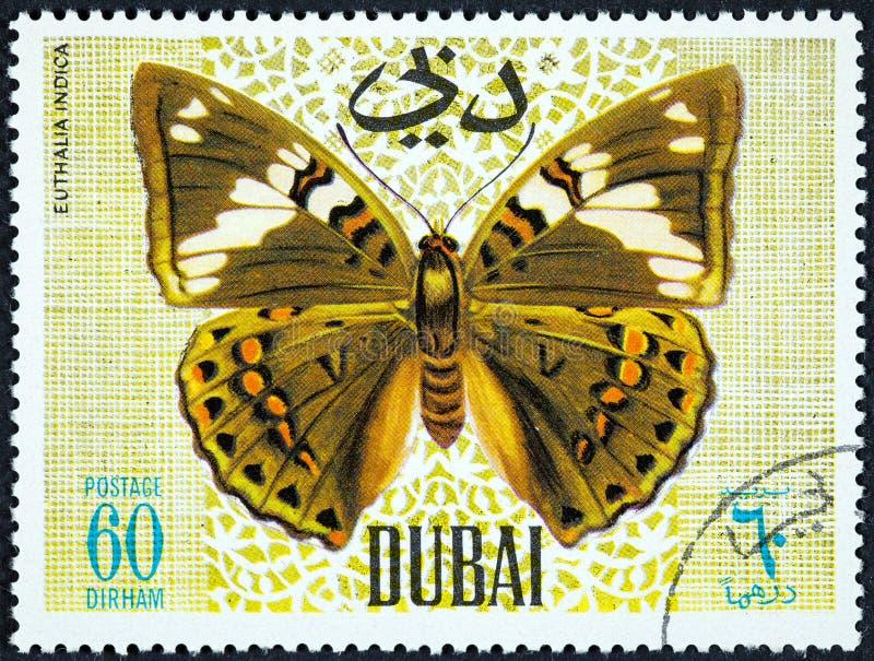 Ένα γραμματόσημο που τυπώνεται από το Ντουμπάι, παρουσιάζει πεταλούδα, Euthalia Indica στοκ εικόνες
