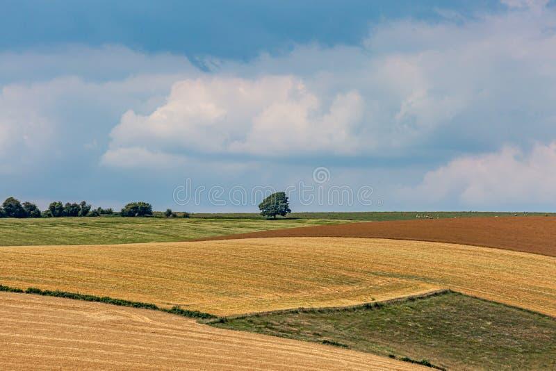 Ένα ειδυλλιακό τοπίο του Σάσσεξ στοκ φωτογραφίες