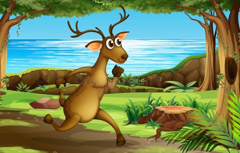Ένα ελάφι που τρέχει στο δάσος διανυσματική απεικόνιση