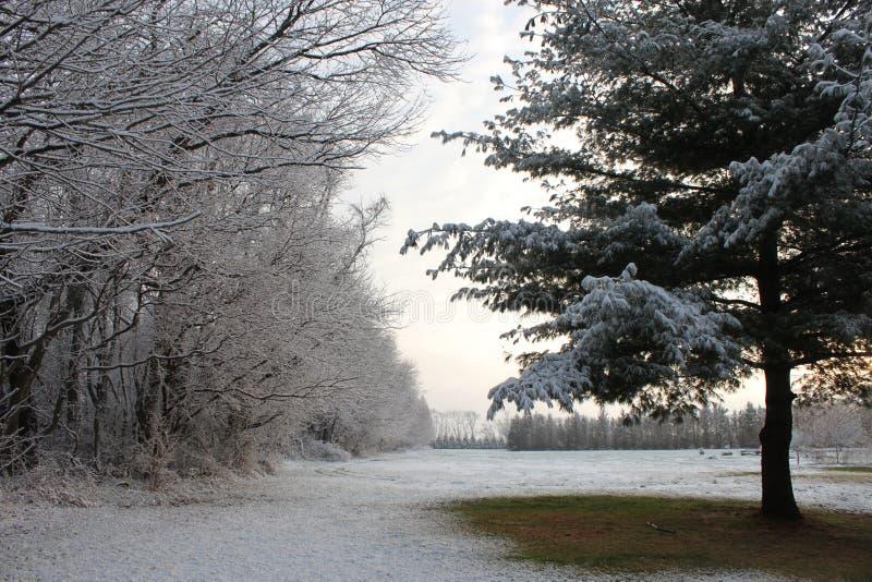 Ένα ελαφρύ ξεσκόνισμα του χιονιού στοκ φωτογραφία με δικαίωμα ελεύθερης χρήσης