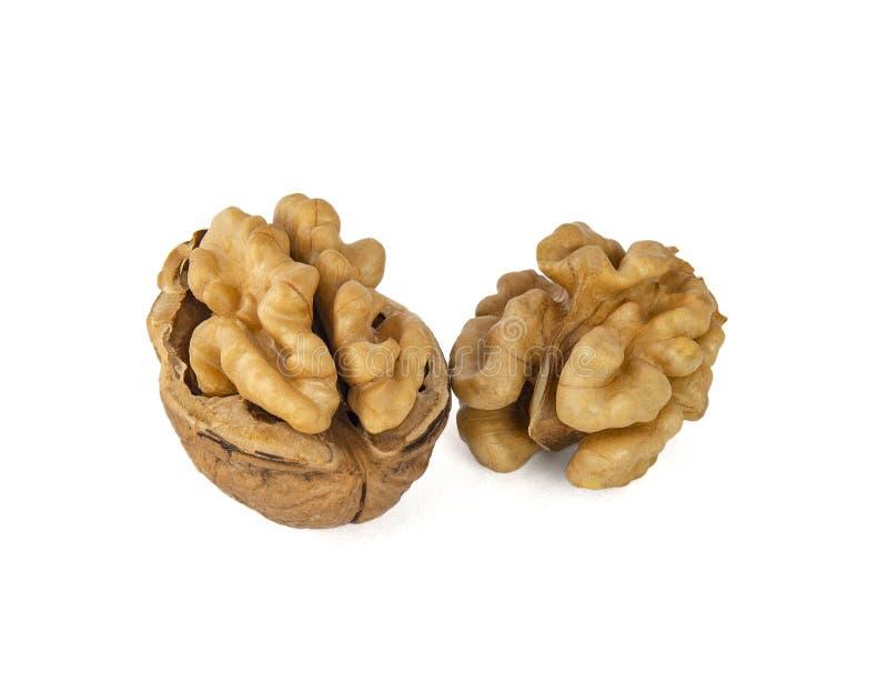 Ένα ζευγάρι των ξεφλουδισμένων ξύλων καρυδιάς φαίνεται πολύ παρόμοιο με τις συνελίξεις του εγκεφάλου στοκ εικόνες