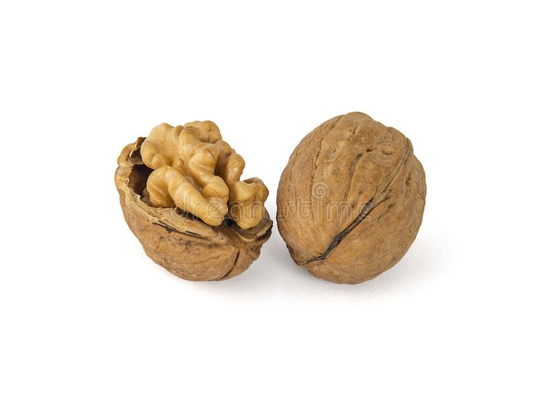 Ένα ζευγάρι των ξεφλουδισμένων ξύλων καρυδιάς φαίνεται πολύ παρόμοιο με τις συνελίξεις του εγκεφάλου στοκ φωτογραφία