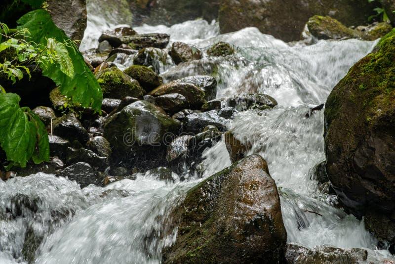 Ένα ισχυρό ρεύμα βουνών ρέει κάτω από τους βράχους και τις πέτρες στοκ φωτογραφίες με δικαίωμα ελεύθερης χρήσης