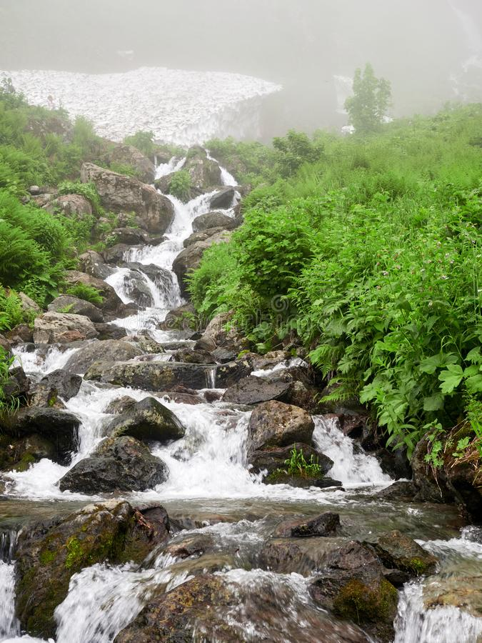 Ένα ισχυρό ρεύμα βουνών ρέει κάτω από τους βράχους σε μια πυκνή ομίχλη στοκ φωτογραφία με δικαίωμα ελεύθερης χρήσης