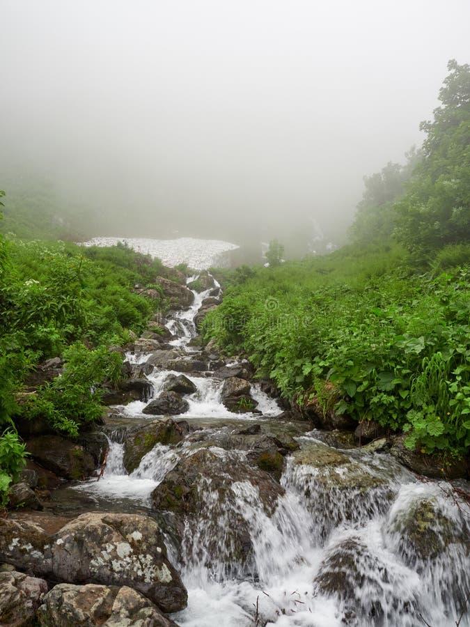 Ένα ισχυρό ρεύμα βουνών ρέει κάτω από τους βράχους σε μια πυκνή ομίχλη στοκ εικόνες