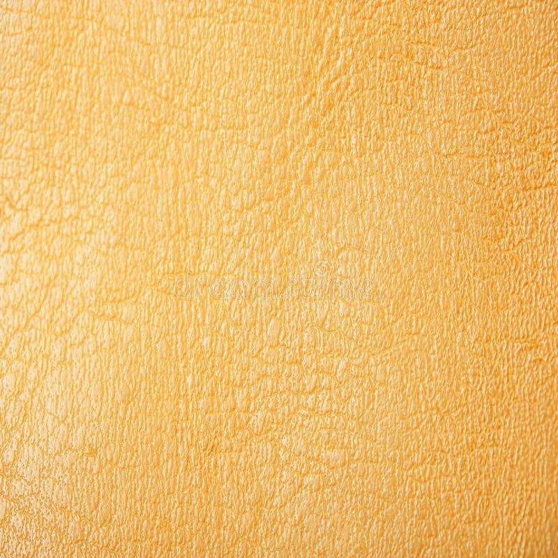 Ένα κίτρινο δέρμα στοκ φωτογραφία