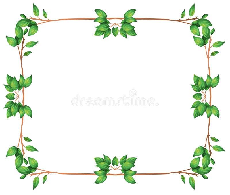 Ένα κενό πλαίσιο με τα πράσινα φυλλώδη σύνορα ελεύθερη απεικόνιση δικαιώματος