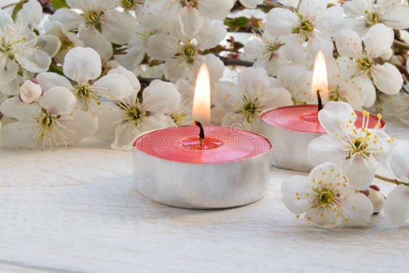 Ένα κερί στέκεται σε έναν ξύλινο άσπρο πίνακα κοντά στους κλάδους των άσπρων λουλουδιών του κερασιού στοκ φωτογραφία με δικαίωμα ελεύθερης χρήσης