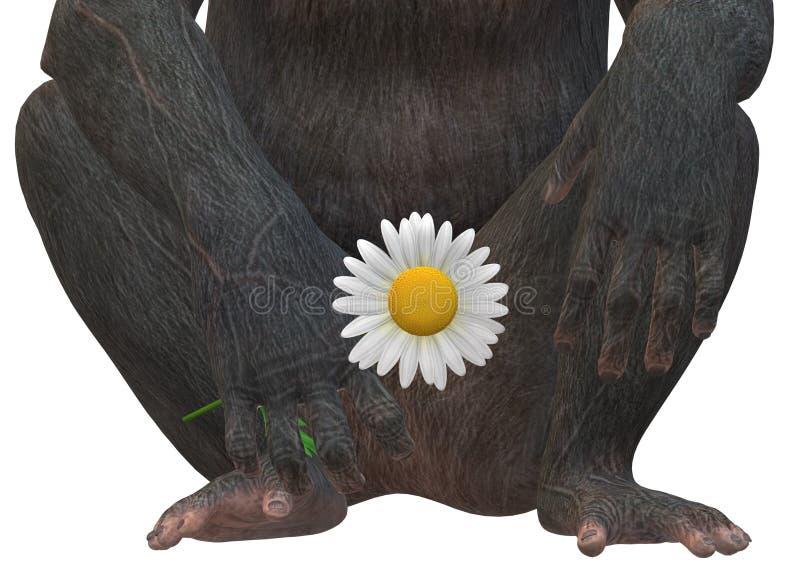 Ένα κλειστό παράδειγμα στο κάτω μέρος του κορμού ενός πιθήκου πρωτεύοντος που κρατά ένα μαργαρίτα στο χέρι του απεικόνιση αποθεμάτων