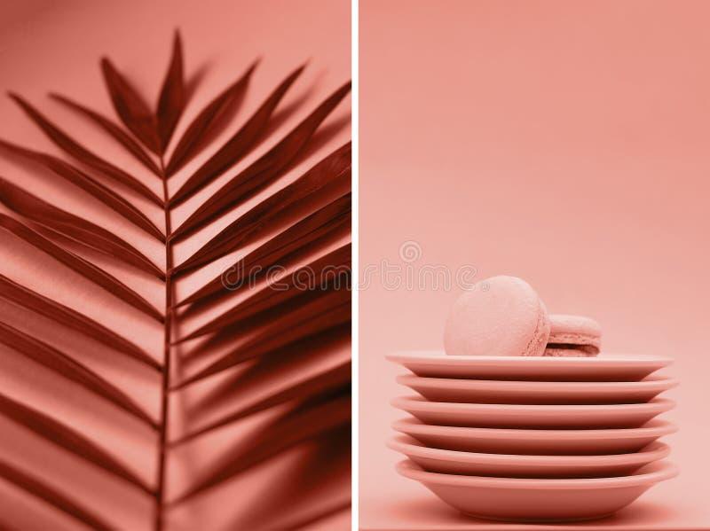Ένα κολάζ των φωτογραφιών του χρώματος κοραλλιών με τους κλάδους και macaroons φοινικών στοκ φωτογραφία
