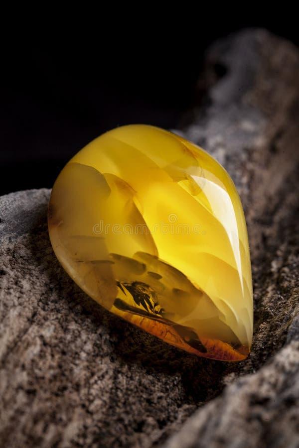 Φυσικός ηλέκτρινος Ένα κομμάτι κίτρινου αδιαφανούς φυσικού ηλέκτρινου στο μεγάλο κομμάτι του σκοτεινού λιθοστρωμένου ξύλου στοκ εικόνες με δικαίωμα ελεύθερης χρήσης