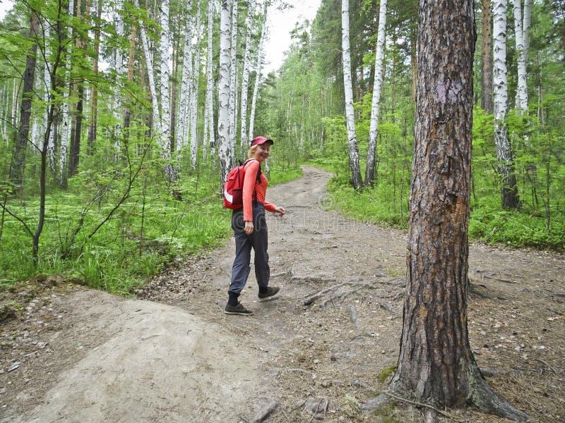 Ένα κορίτσι με ένα σακίδιο πλάτης πηγαίνει κατά μήκος μιας δασικής πορ στοκ εικόνα