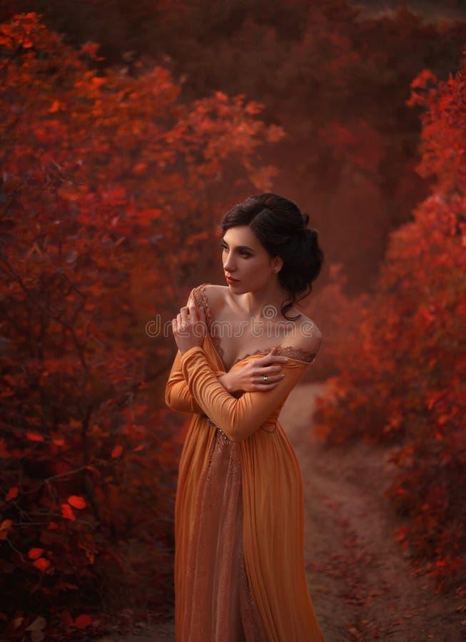 Ένα κορίτσι σε ένα εκλεκτής ποιότητας φόρεμα στοκ εικόνα