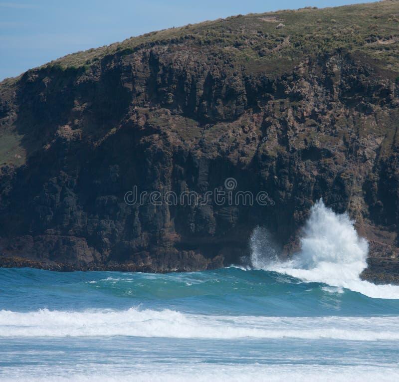 Ένα κύμα που συντρίβει ενάντια σε έναν απότομο βράχο στην παραλία κόλπων φλεβοτόμων στη χερσόνησο Otago κοντά σε Dunedin στη Νέα  στοκ εικόνες