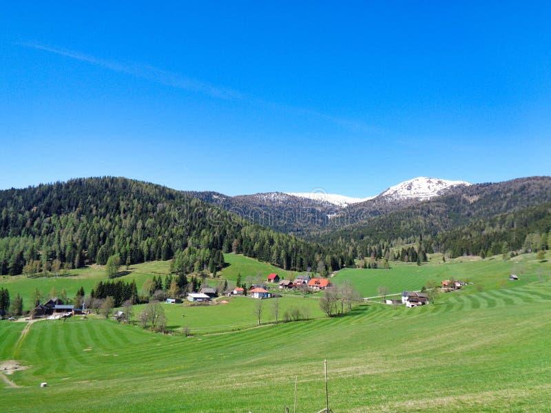 ένα λιβάδι βουνών στο χρονικό μπλε ουρανό άνοιξη της Αυστρίας στοκ εικόνα