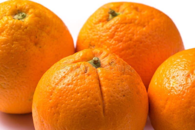 Ένα μάτσο από τέσσερα οργανικά πορτοκάλια κοντά στοκ φωτογραφία με δικαίωμα ελεύθερης χρήσης