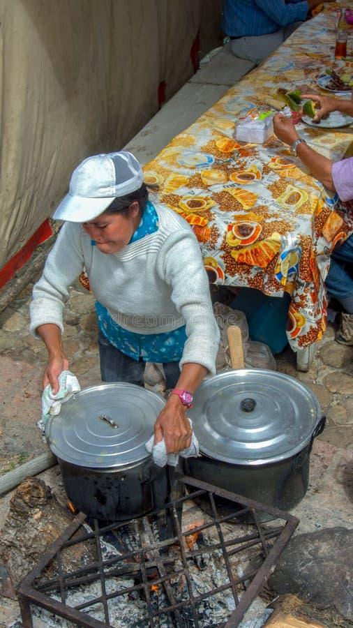 Ένα μαγείρεμα γυναικών σε μια ξύλινη πυρκαγιά στοκ φωτογραφία