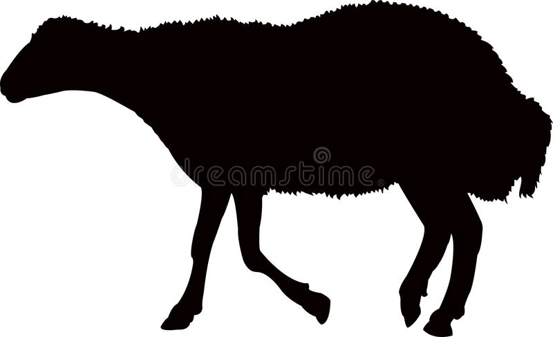 Ένα μαύρο διάνυσμα σκιαγραφιών χρώματος σωμάτων προβάτων ελεύθερη απεικόνιση δικαιώματος