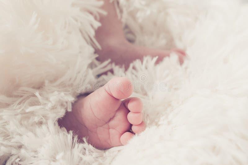 ένα μικροσκοπικό πόδι ενός νεογέννητου που τυλίγεται σε ένα κάλυμμα στοκ φωτογραφία με δικαίωμα ελεύθερης χρήσης