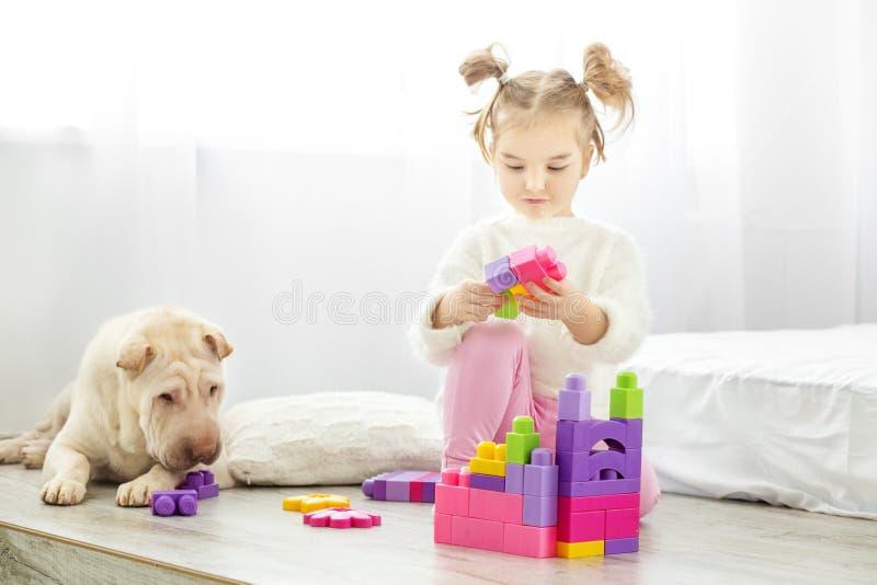 Ένα μικρό κορίτσι παίζει τους πλαστικούς φραγμούς παιχνιδιών Το σκυλί βρίσκεται _ στοκ εικόνες