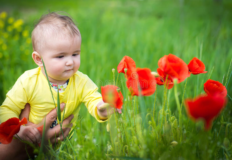 Ένα μικρό παιδί που παίζει στον τομέα στοκ φωτογραφίες με δικαίωμα ελεύθερης χρήσης