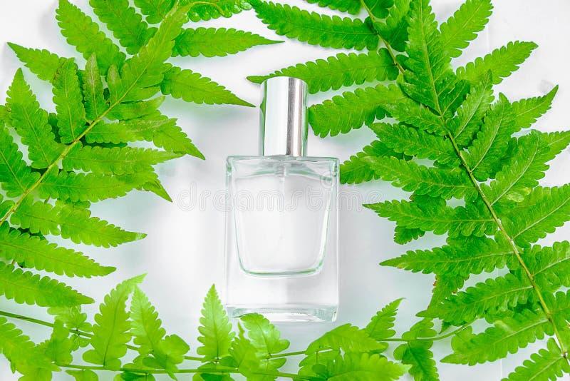 Ένα μπουκάλι του άσπρων αρώματος και των λουλουδιών με τα φύλλα στοκ εικόνες