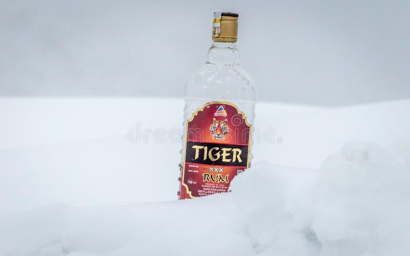 Ένα μπουκάλι xxx ρουμιού εμπορικών σημάτων τιγρών που απομονώνεται σε ένα υπόβαθρο χιονιού στοκ εικόνες