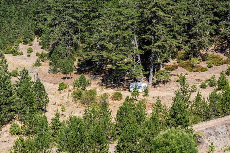 Ένα μόνο σπίτι στρατοπέδευσης στη μέση ενός δάσους στοκ εικόνες