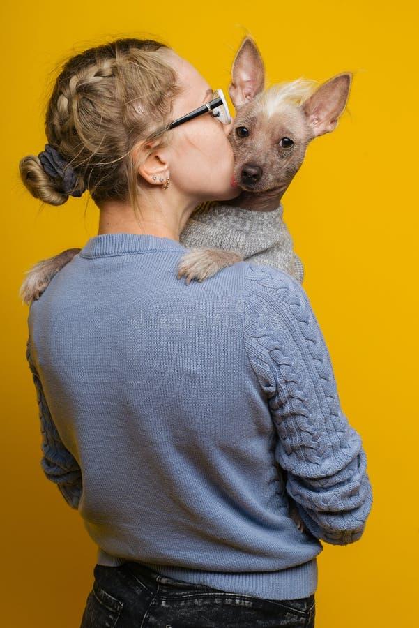 """Ένα νέο κορίτσι στα γυαλιά και ένα πουλόβερ φιλά Ï""""Î¿ κινεζικό λοφιοφόρο στοκ φωτογραφίες με δικαίωμα ελεύθερης χρήσης"""