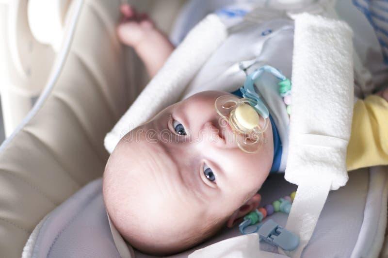 Ένα νεογέννητο μωρό στερεώνεται σε ένα highchair για τη σίτιση με ένα πέντε σημείων λουρί Εκλεκτική εστίαση στοκ εικόνες με δικαίωμα ελεύθερης χρήσης