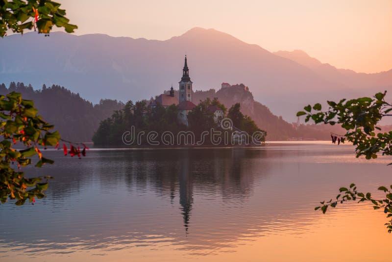 Ένα νησί με την εκκλησία στην αιμορραγημένη λίμνη, Σλοβενία στην ανατολή στοκ εικόνα