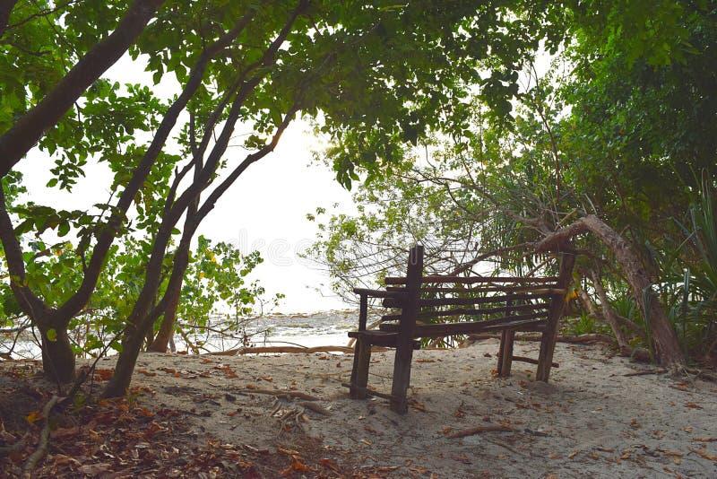 Ένα ξύλινο κάθισμα στη σκιά των πράσινων δέντρων στο παράκτιο δάσος στην άσπρη αμμώδη παραλία - ειρήνη και χαλάρωση στοκ εικόνες