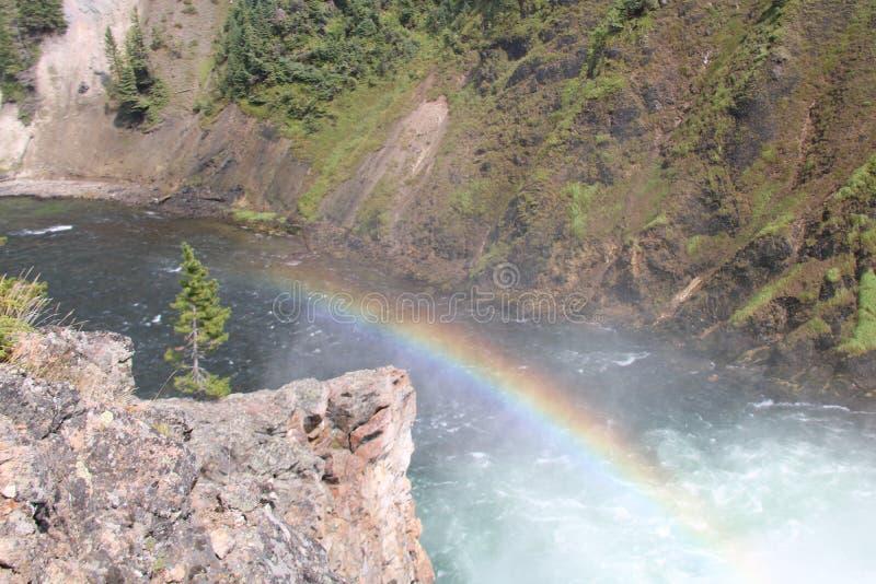 Ένα ουράνιο τόξο στις χαμηλότερες πτώσεις στο μεγάλο φαράγγι του Yellowstone στοκ εικόνες