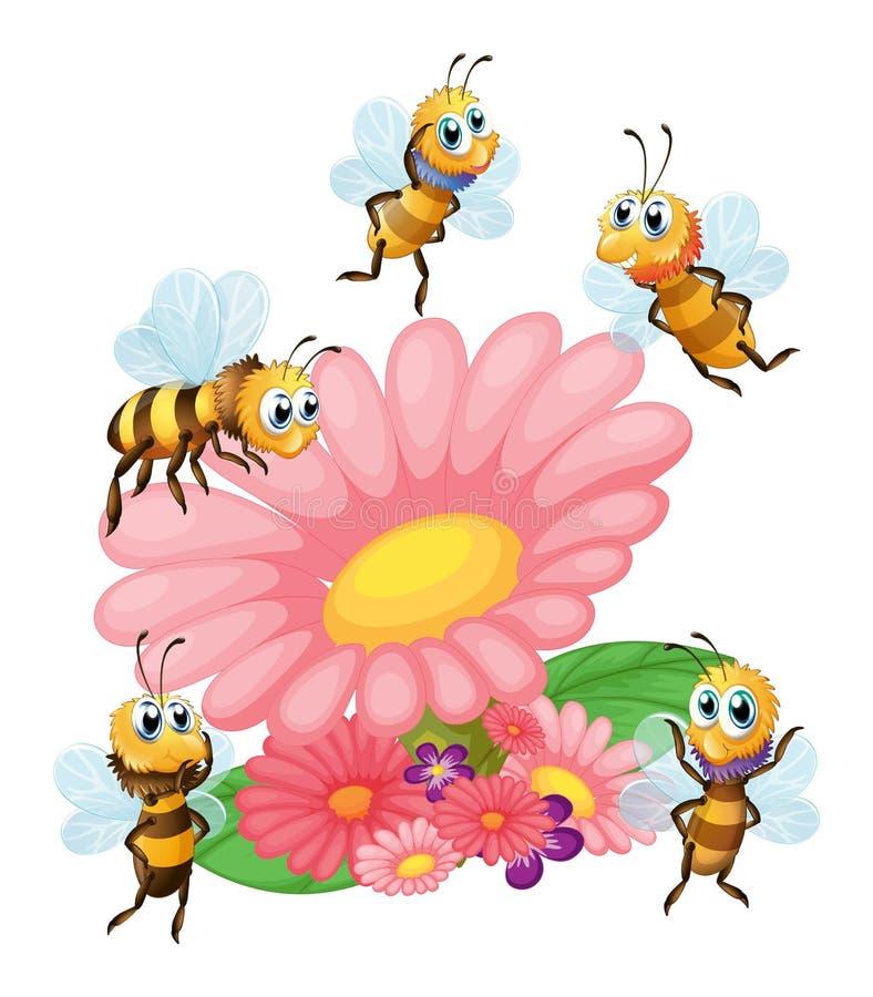 Ένα λουλούδι που περιβάλλεται μεγάλο με τις μέλισσες ελεύθερη απεικόνιση δικαιώματος