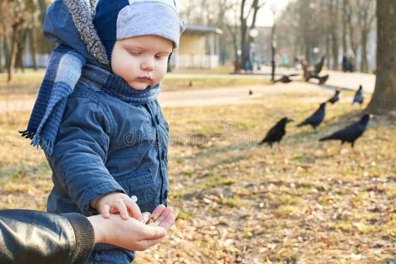Ένα παιδί παίρνει τους σπόρους κολοκύθας από το χέρι της μητέρας της για να ταΐσει τα πουλιά στο πάρκο την πρώιμη άνοιξη στοκ εικόνα