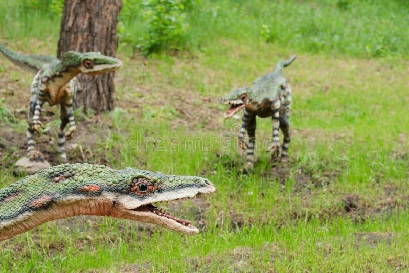 Ένα πακέτο των δεινοσαύρων Coelophysis, πρότυπα, αναδημιουργία στοκ εικόνες