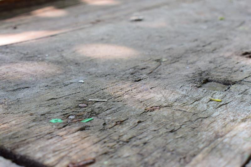 Ένα παλαιό θαμπό ξηρό ξύλινο υπόβαθρο με τις μικρές πέτρες, όπως crumbs του γκρίζου χρώματος στοκ εικόνες