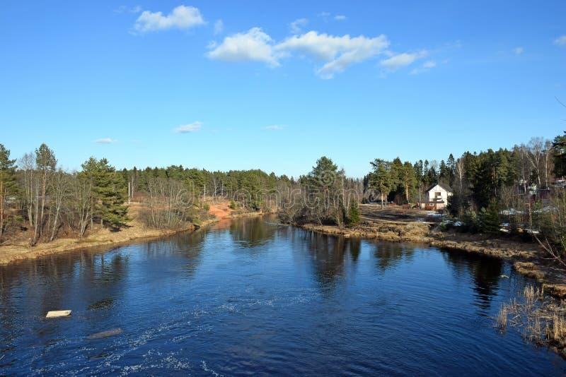 Ένα πανόραμα του ποταμού Oredezh στοκ φωτογραφίες