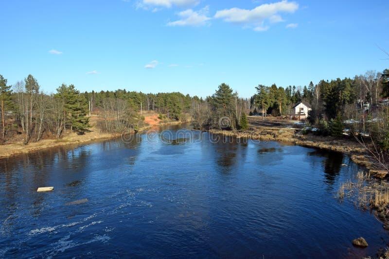 Ένα πανόραμα του ποταμού Oredezh στοκ εικόνες