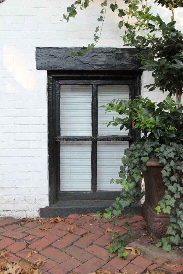 Ένα παράθυρο επίγειων επιπέδων στοκ εικόνα με δικαίωμα ελεύθερης χρήσης