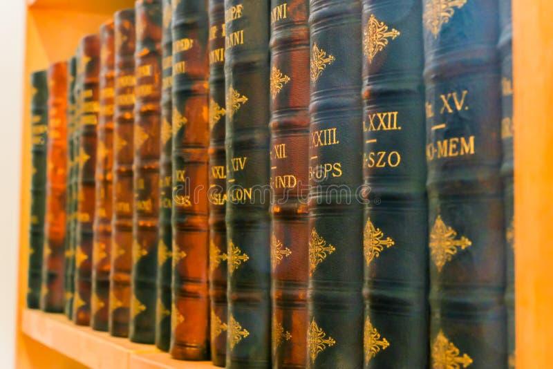Ένα ράφι με παλαιό Inchclopedias σε έναν υπόλοιπο κόσμο στοκ εικόνα με δικαίωμα ελεύθερης χρήσης