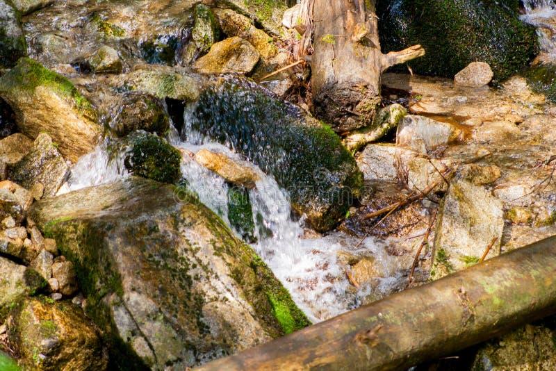 Ένα ρεύμα βουνών Ένας αργός ρέοντας ποταμός μεταξύ των πετρών στα βουνά στοκ εικόνες με δικαίωμα ελεύθερης χρήσης